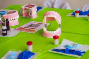 fake plastic teeth at a workshop to show an example of teeth