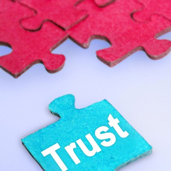 puzzle piece showing trust as the key to treatment plan success